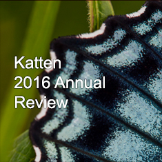Katten 2016 Annual Review with photo of butterfly wing
