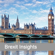 Brexit Insights with Palace of Westminster and River Thames in background